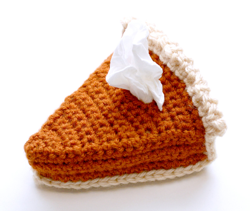 Fall Crochet Tissue Cozy