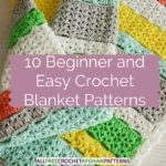 Blog - Beginner and Easy Crochet Afghan